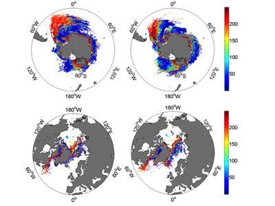 Iceberg distributions