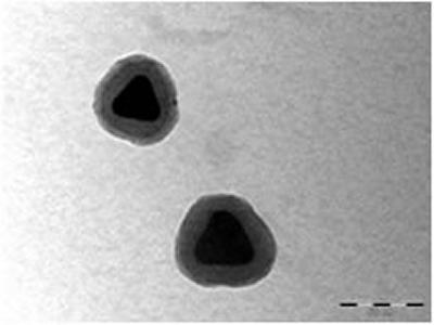 These nanoprisms are coated with a silica shell