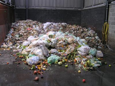 Our researchers are using anaerobic digestion to recycle food waste and produce biofuels