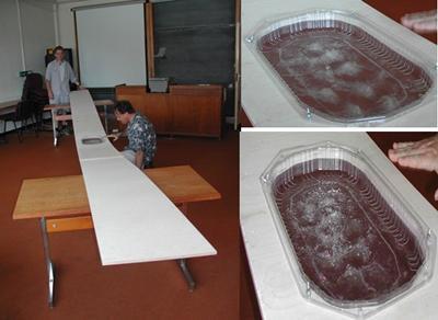 plank experiment