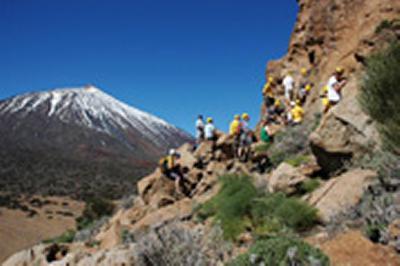 Student fieldwork at Las Cañadas volcano