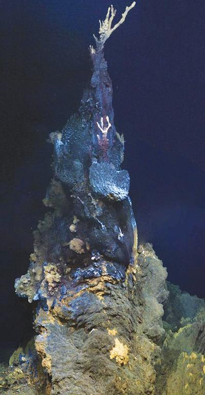 Jabberwocky vent