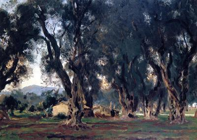 Olives Trees at Corfu, 1909