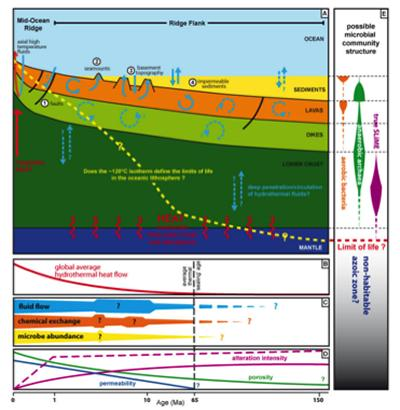 Processes and their potential controls and limits that relate to aging of the ocean crust (After Coggon, R.M)