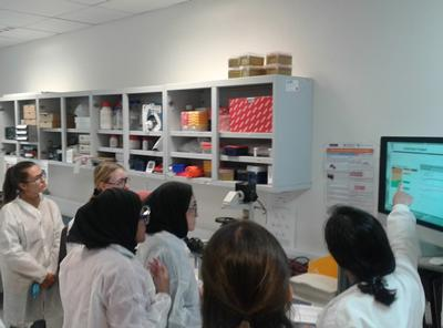 Students visiting our laboratories to undertake practical group work.