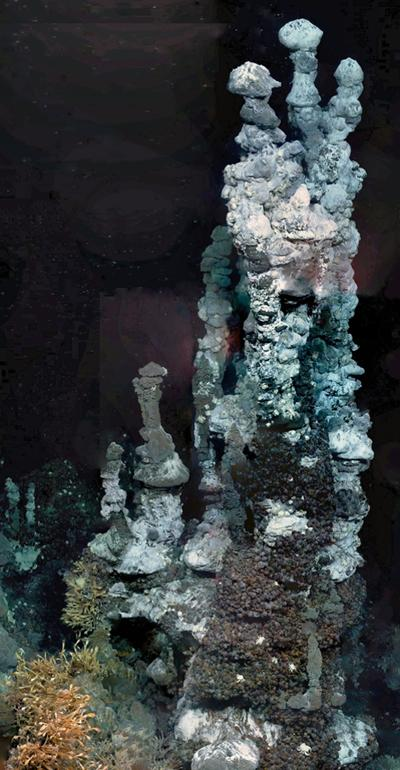 Antarctic vent chimney