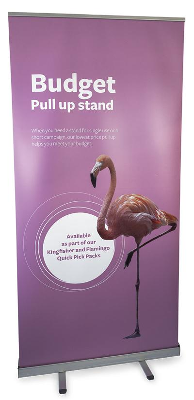 Budget style pull up stand