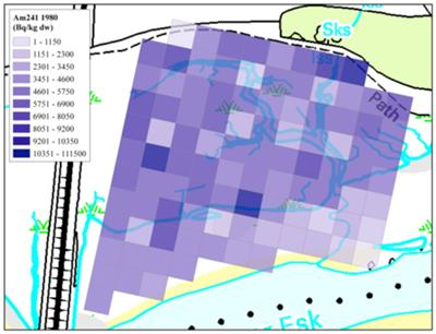 Spatial distribution of actinides in the Ravenglass marsh