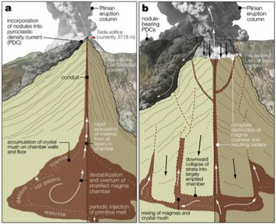 Fig. 3. Schematic  of the Las Cañadas magma chamber development. (Source: R Taylor)
