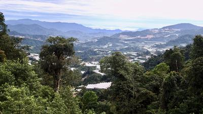 The montane regions of Peninsular Malaysia, where much of the forest has been cleared for agriculture.