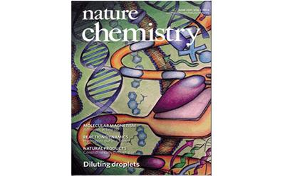 Nature Chemistry book cover