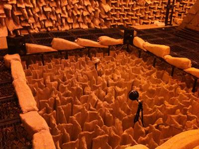 Experiment on a spherical microphone array in ISVR's large anechoic chamber