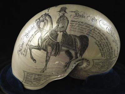 Nautilus shell commemorating the Duke of Wellington, dating from the 1850s.