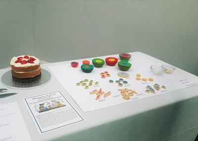 Roxanna - M&M nanoparticles cake