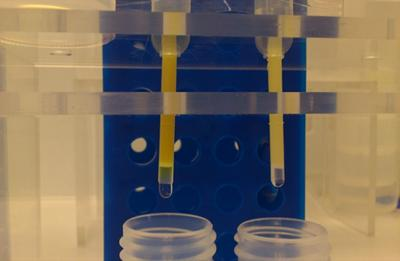 Fe purification using an anion exchange technique in a class 100 clean lab at NOCS