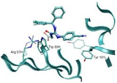 Predicted and experimental protein-ligand structures