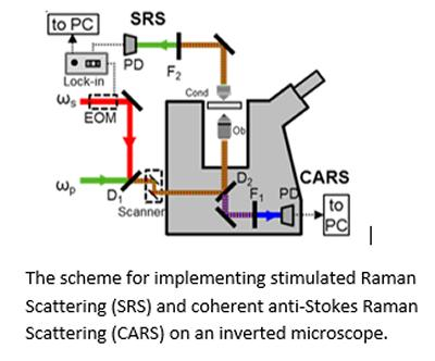 Nanoscopy image