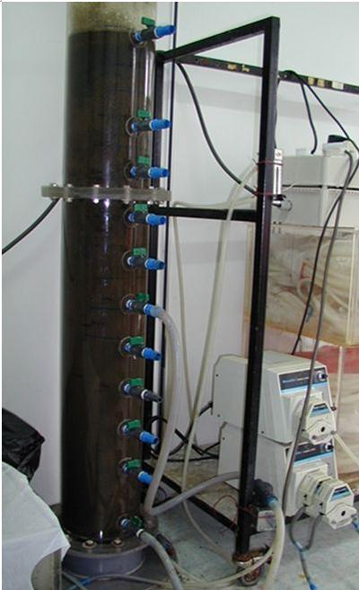 Pilot-scale reactor with granular sludge treating real wastewater