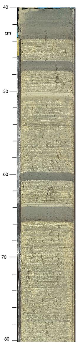 Example of sediment core collected during Exp. 381.