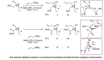 Key selective allylation reaction