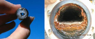 Examples of Biofilm build-up in water pipe systems