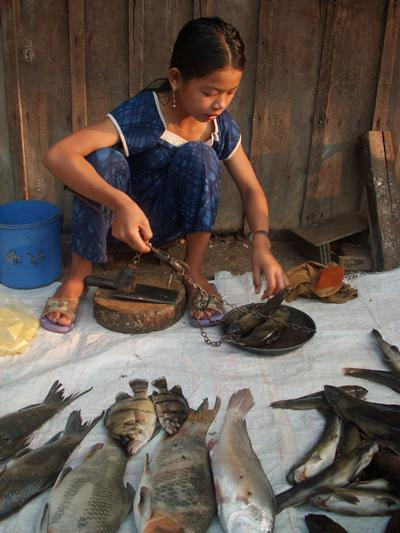 Girl selling fish