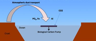 Schematic of dust transport and nutrient delivery to the surface ocean