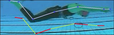 Dynamic motion capture