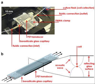 Ultrasonic microfluidic device