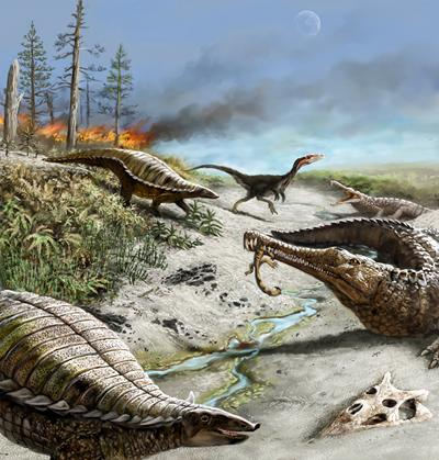 212 million years ago northern New Mexico was dry and hot with common wildfires. Early carnivorous dinosaurs were small and rare, whereas other reptiles were quite common.