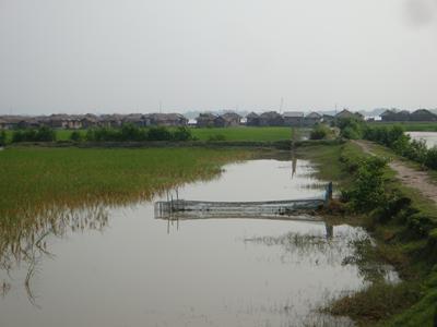 Ganges-Brahmaputra-Meghna delta