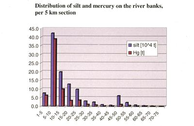 Distribution of ash and mercury on the river banks