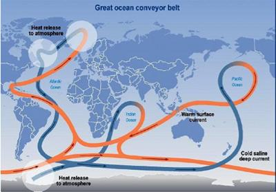 The great ocean conveyor belt, depicting global seawater circulation  (Credit: IPCC)
