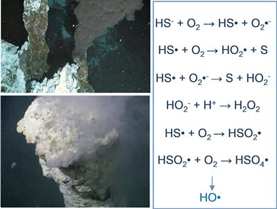 Vent sites and HO radical production reaction