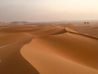 Desert panorama: Arabia.