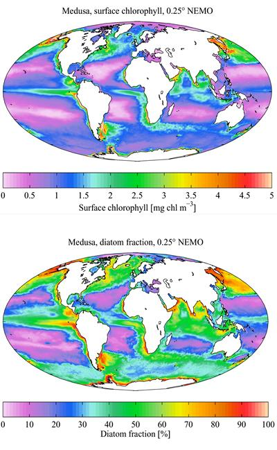 Models configured at NOCS by A. Yool, E. Popova and T. Anderson. Geosci. Model Dev., 4, 381-417, doi:10.5194/gmd-4-381-2011, 2011.