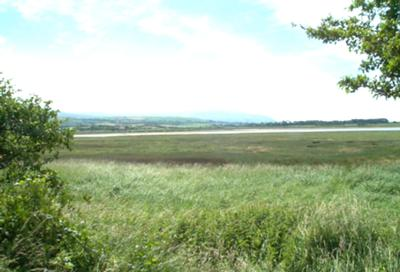 Ravenglass Marsh, Cumbria; a key study area in radionuclide dispersion research