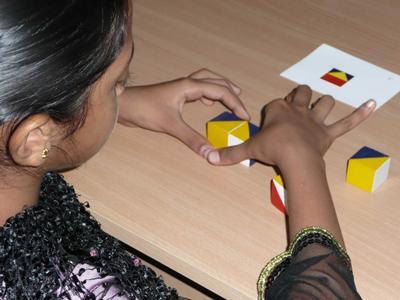 Cognitive testing Mysore cohort study