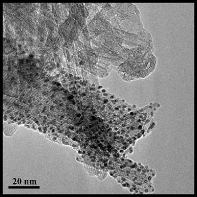 Titanate nanotubes as a material support for catalysts