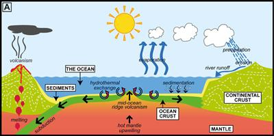 Fig. 1. Processes that affect seawater chemistry, after Coggon (2011)