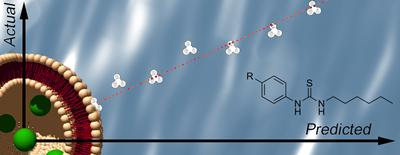 Structure activity relationship studies allow prediction of anion transport properties.