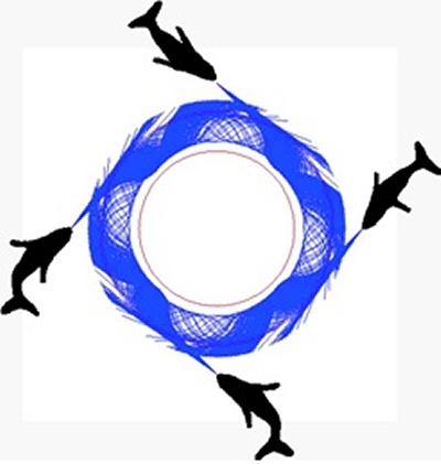 in circular net