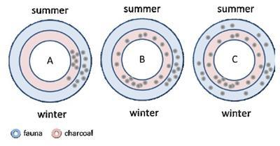 Interpreting seasonal distributions of fauna and charcoal