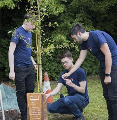 Cameron, Joshua and Miguel plant the new tree