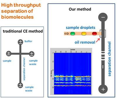 High throughput separation of biomolecules