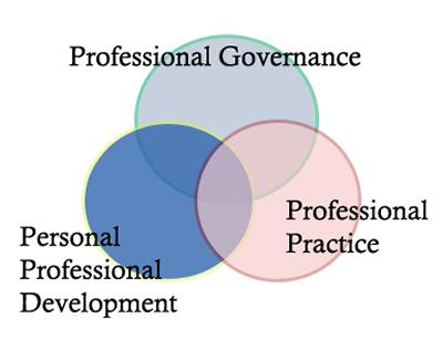 The main aspects of professionalism