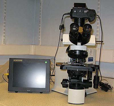Olympus BX51 Photomicroscope