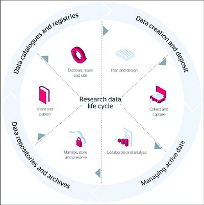 JISC research data management life cycle