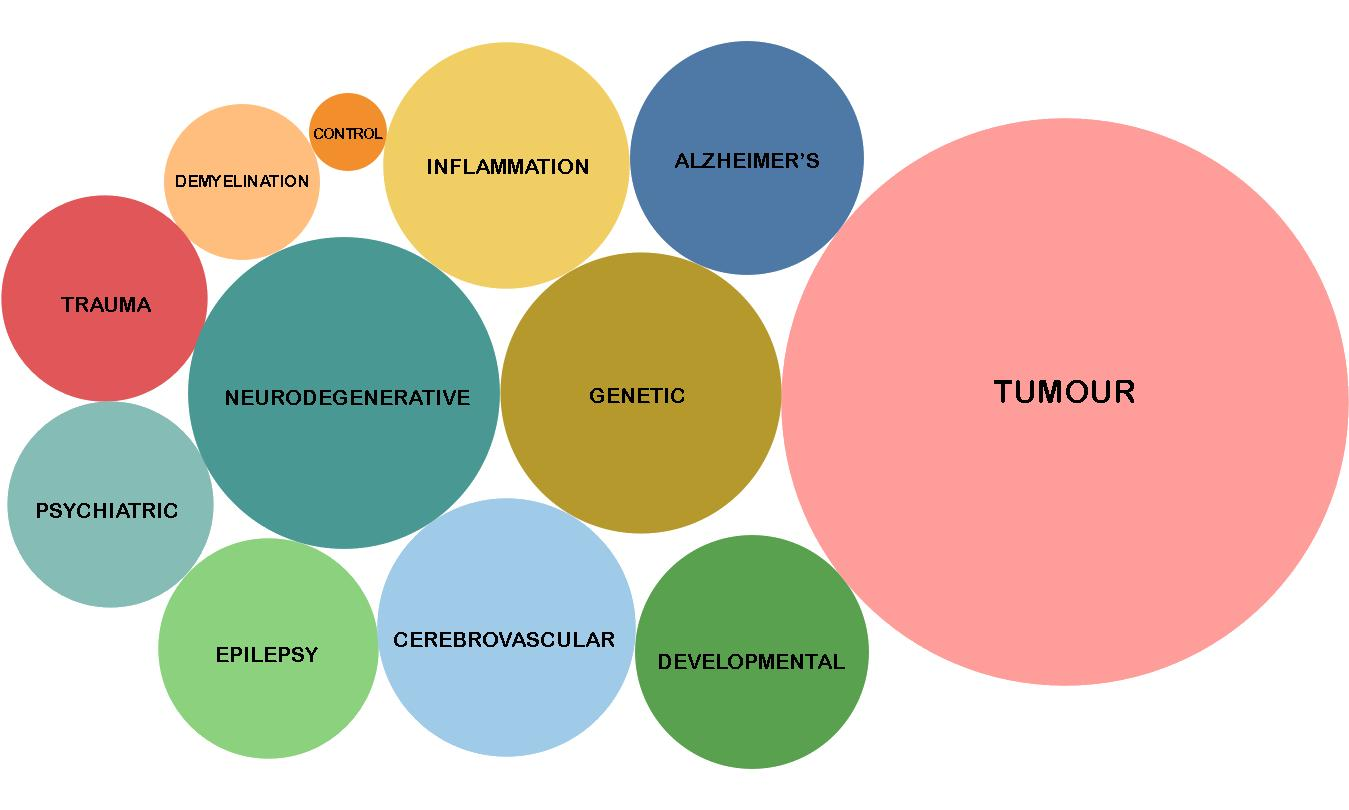 Examples of different disorder types within BRAIN UK