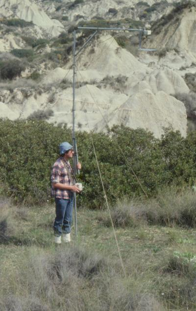 Measuring shrub reflectance with the MMR